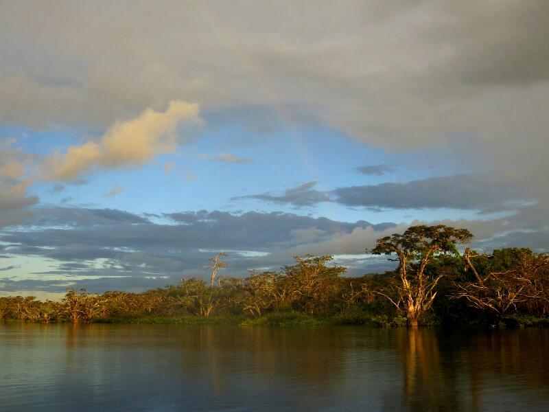 Amazonie-2