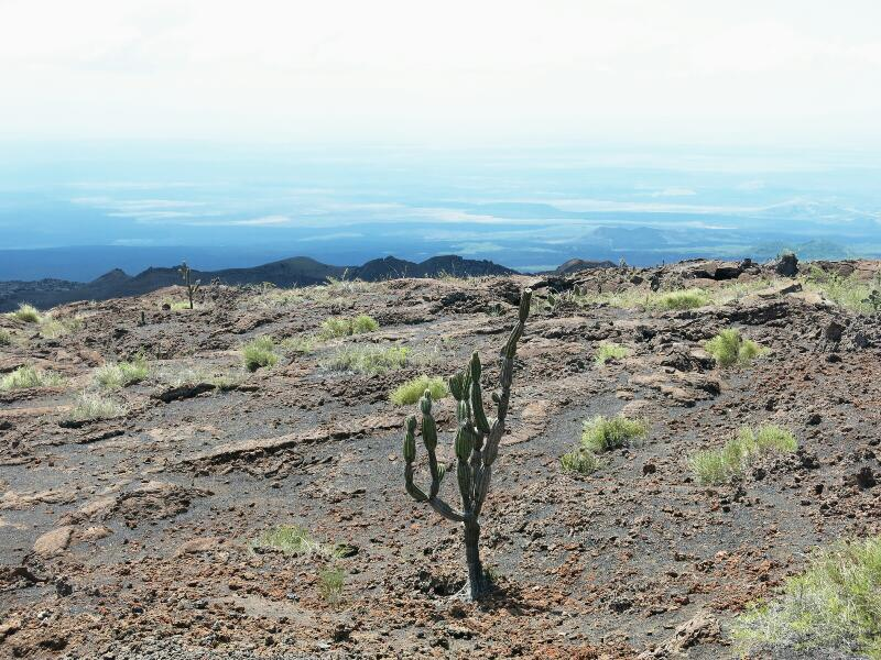 Volcan-Chico-5