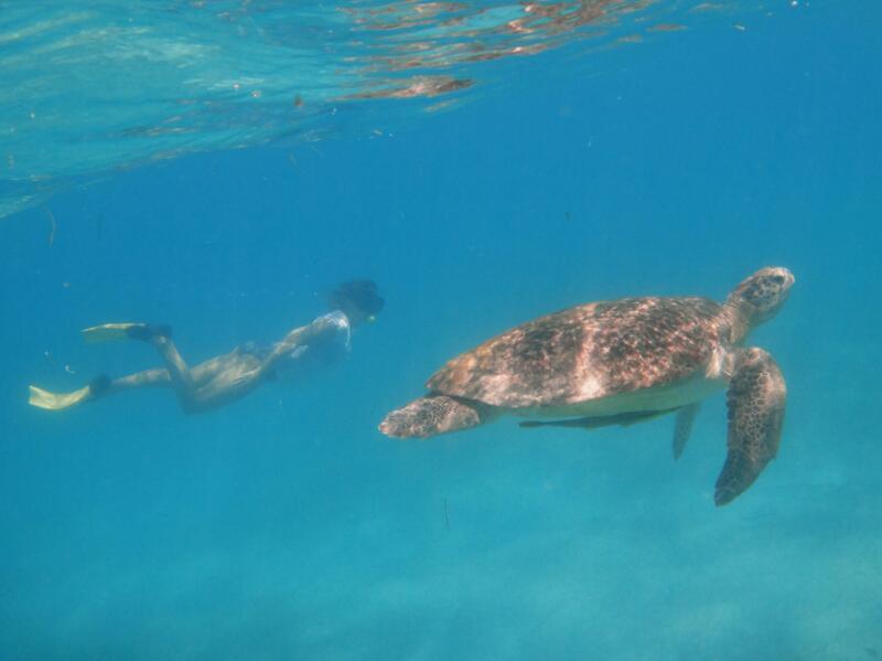 Perh-snorkel-Gina-Heatley-35