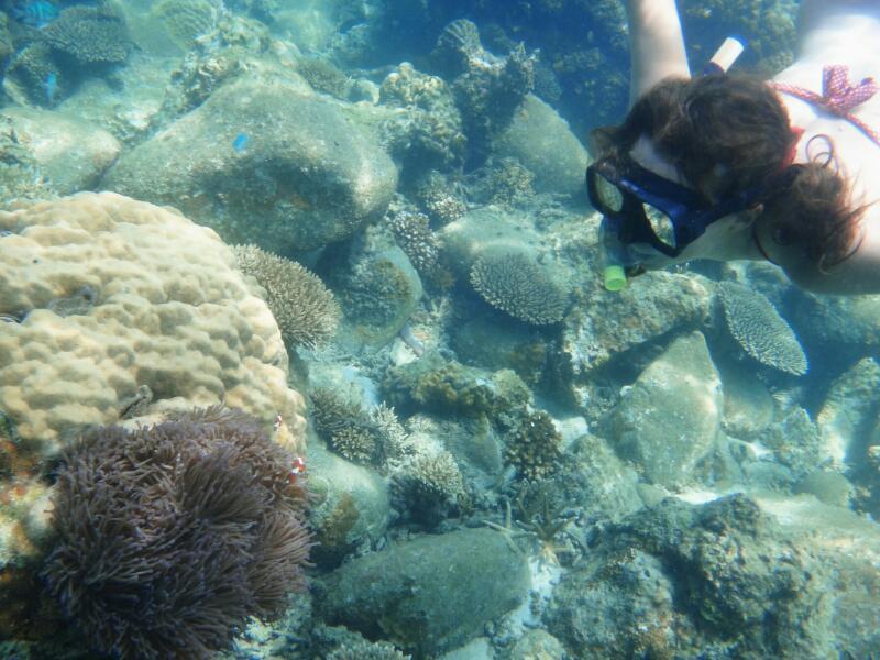 Perh-snorkel-Marjorie-Hobin-11