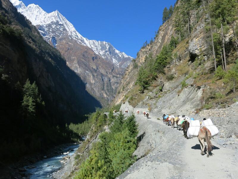 Annapurna-1-Chame-Marjorie-Hobin-30
