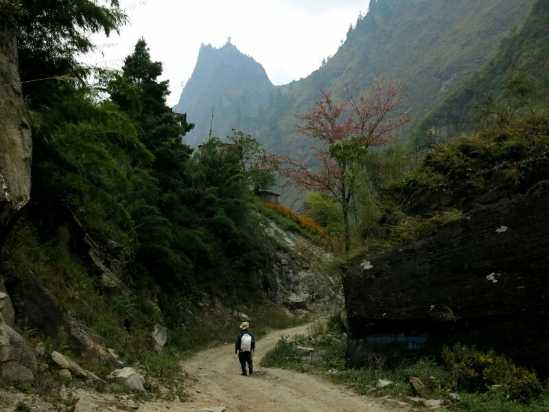 Annapurna-1-Danagyu-Marjorie-Hobin-44