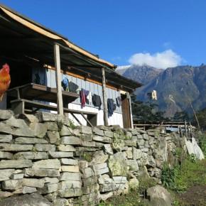 Au coeur de la vallée Marsyangdi