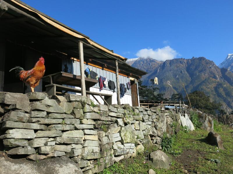 Annapurna-1-Timang-Marjorie-Hobin-36