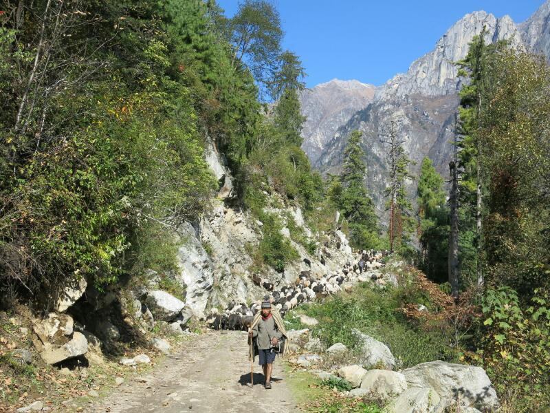 Annapurna-1-to-Chame-Marjorie-Hobin-35