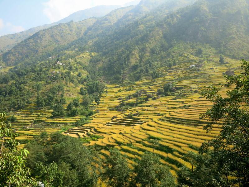 Annapurna-1-to-Ghermut-Marjorie-Hobin-58