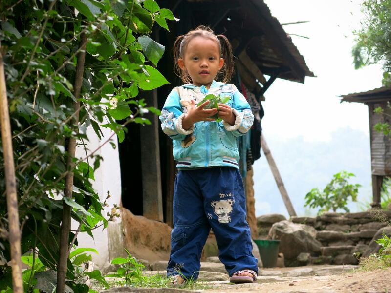 Annapurna-1-to-Ngadi-Marjorie-Hobin-62