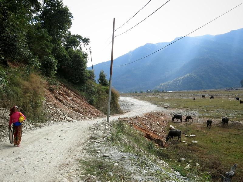 Pokhara-Marjorie-Hobin-18
