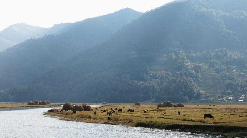 Pokhara-Marjorie-Hobin-19