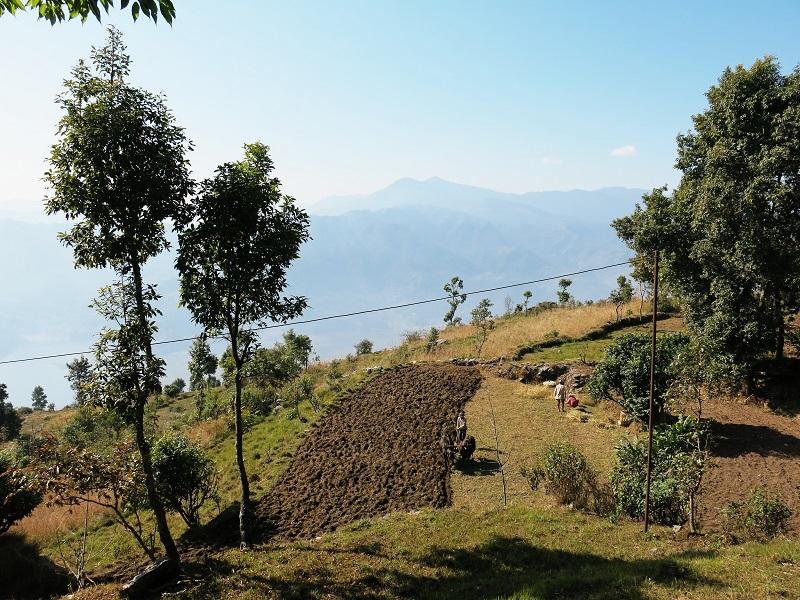 Pokhara-Marjorie-Hobin-23
