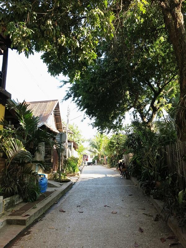 Luang-Prabang-Marjorie-Hobin-36