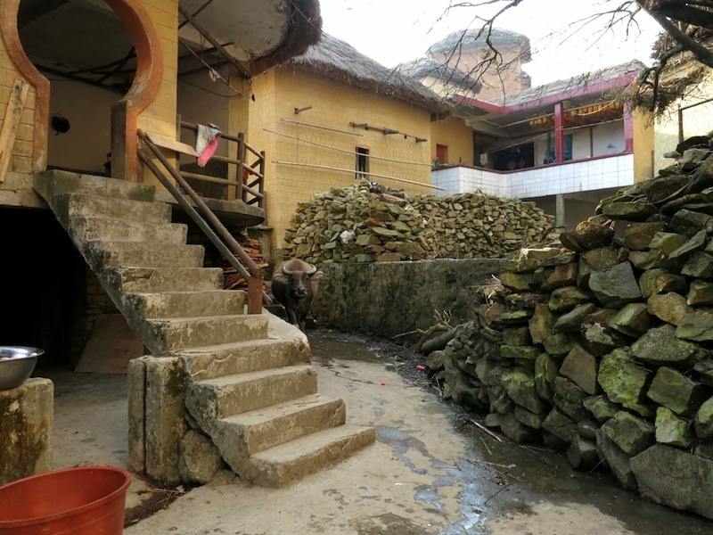Yuanyang-villages-Marjorie-Hobin-13