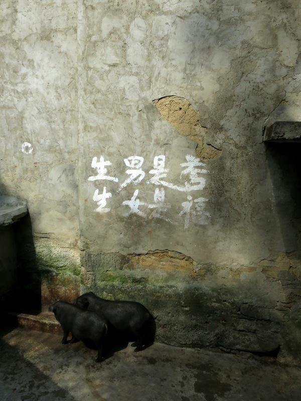 Yuanyang-villages-Marjorie-Hobin-20