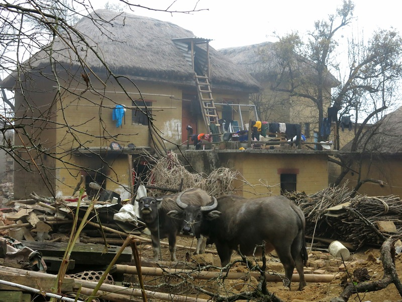 Yuanyang-villages-Marjorie-Hobin-26