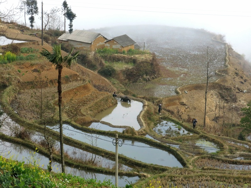Yuanyang-villages-Marjorie-Hobin-7