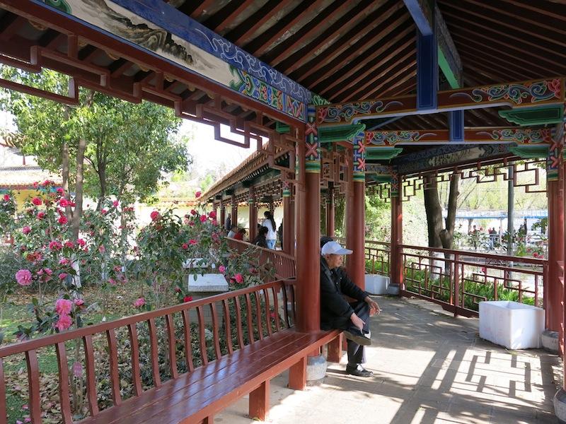 Kunming-parc-Marjorie-Hobin-16