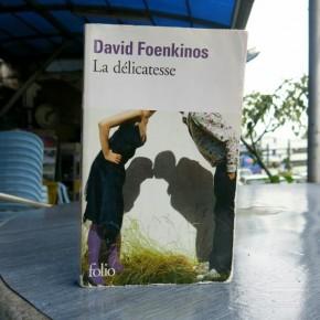 La Délicatesse - de David Foenkinos